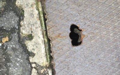 Reports of a damage drain cover